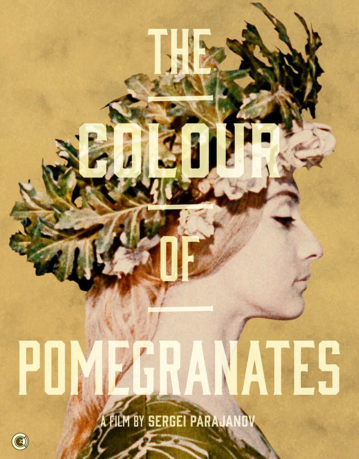 Buy The Colour of Pomegranates Special Edition