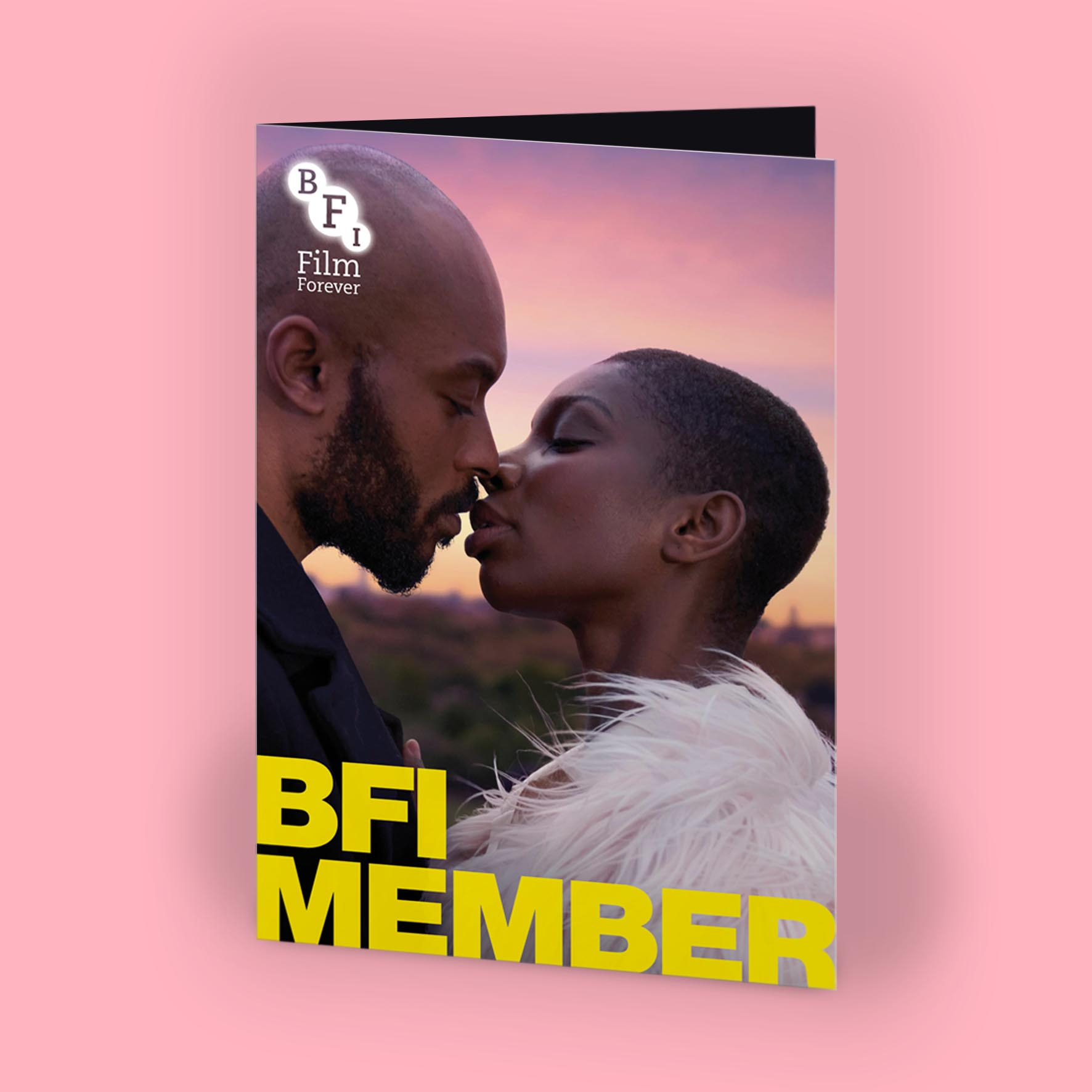 Buy BFI Membership Gift Pack (Been So Long design)