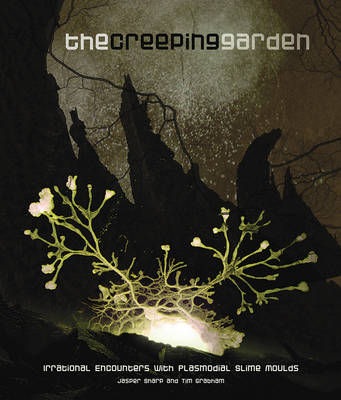 Buy The Creeping Garden