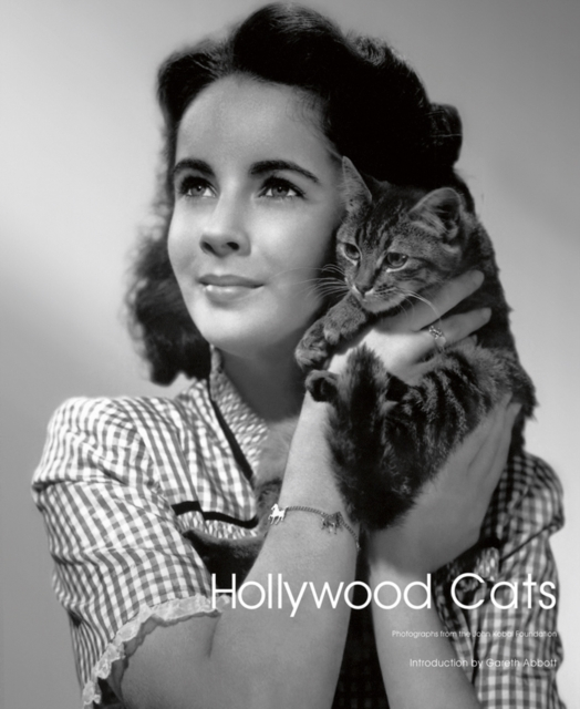 Buy Hollywood Cats : Photographs From the John Kobal Foundation