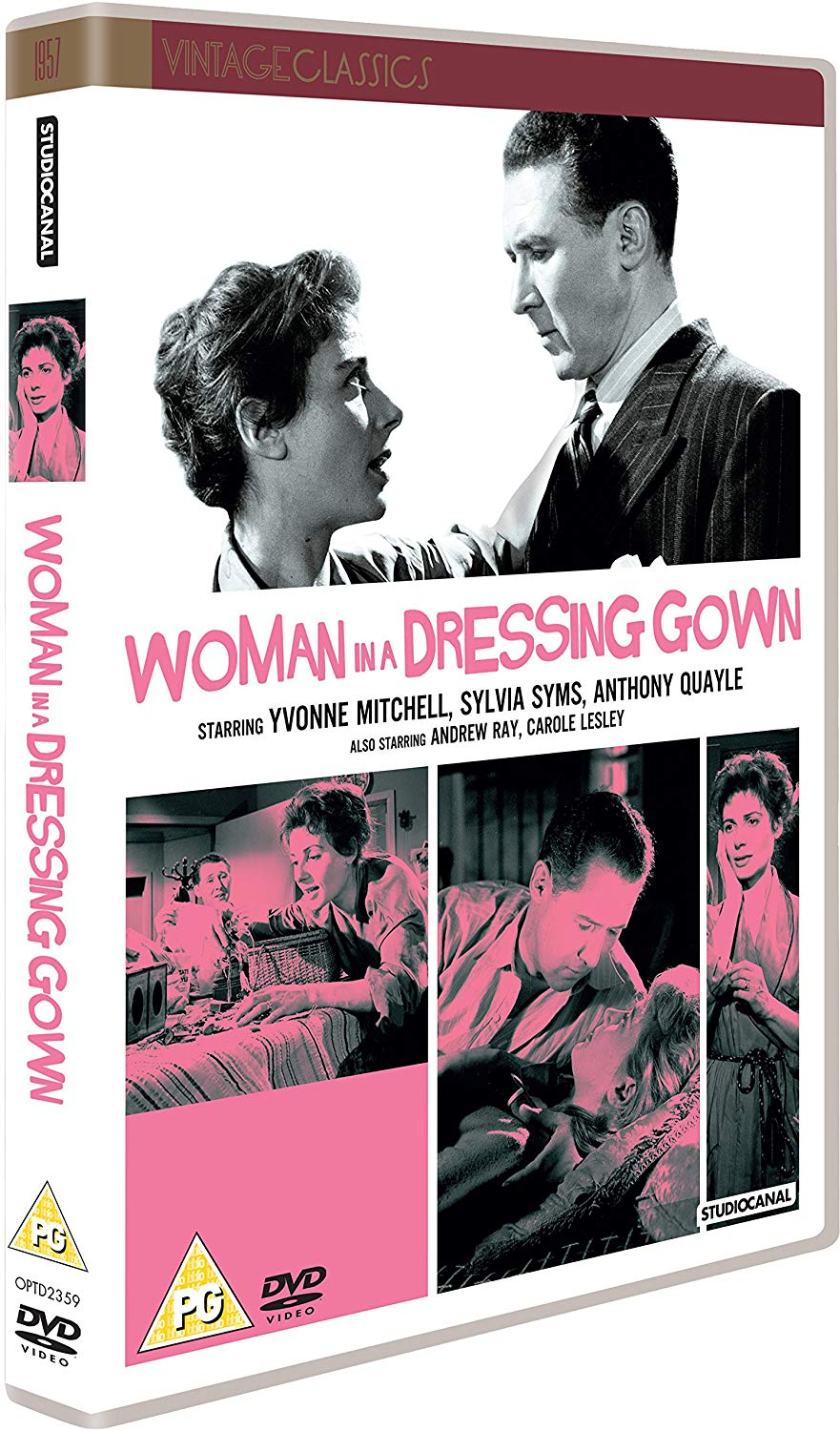 Buy Woman in a Dressing Gown